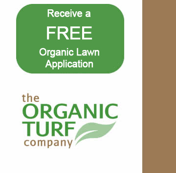 The Organic Turf Company