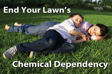 Organic Lawn Care ends your yard's chemical dependency